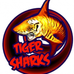 Concert des Tiger Sharks